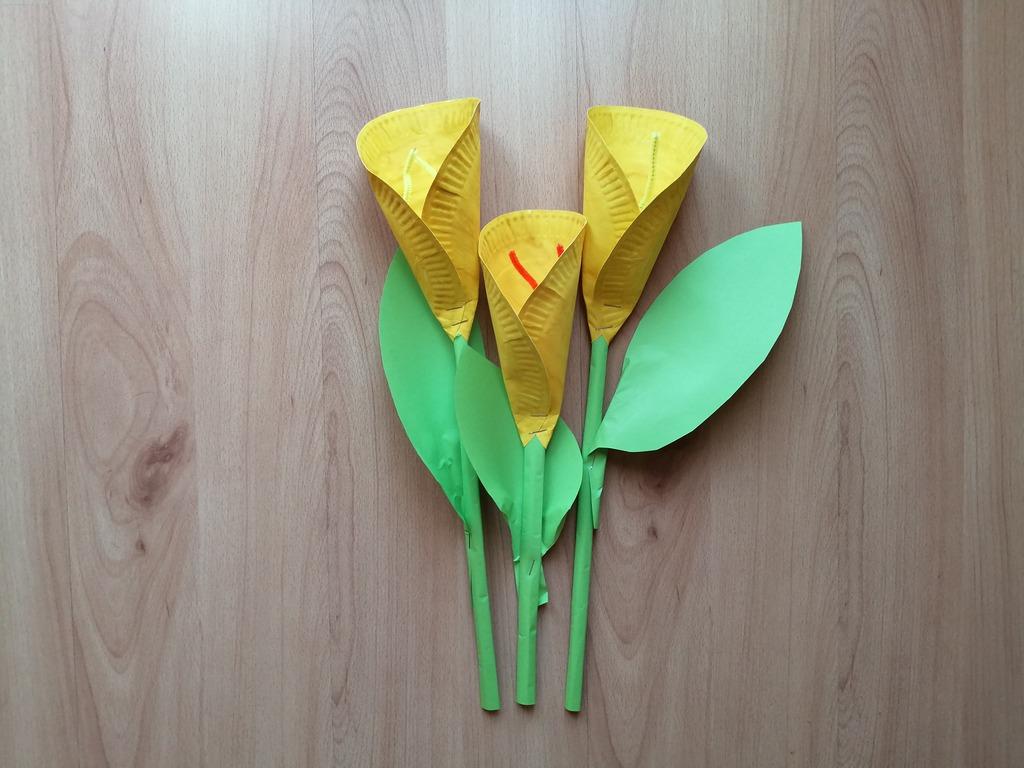 Kalie - praca plastyczna z wykorzystaniem talerzyków papierowych