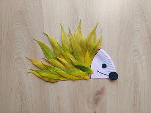 Jeż - praca plastyczna z wykorzystaniem talerzyka papierowego